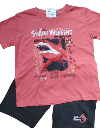 Conjunto de niño verano m/c pantalón corto shark 18115405